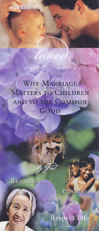 The tremendous benefits that stable marriages provide for children, for society, and for the Church.