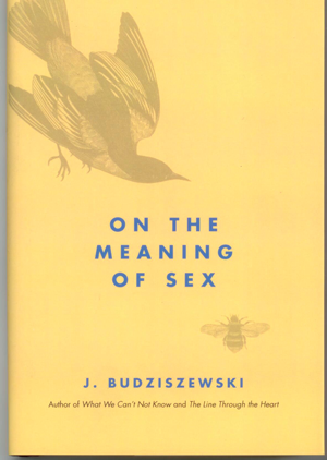 The nature, meaning, and mysteries of sexuality.