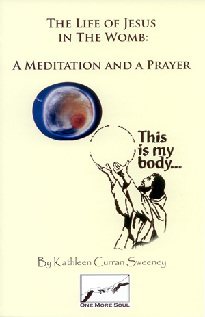 Meditation and a prayer, the life of Jesus in the womb. A nine month journey explaining the life of carrying a child.